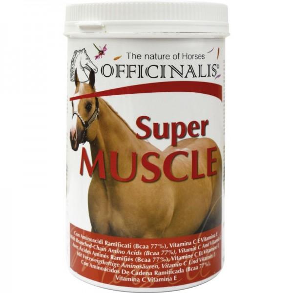 Super Muscle - Muskelaufbau