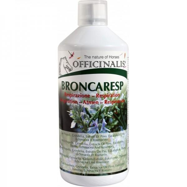 Broncaresp - stärkt Immunsystem & Hustenlösend