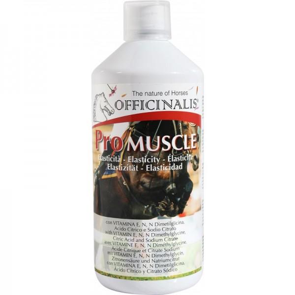 Pro Muskel - Gegen Muskelkater