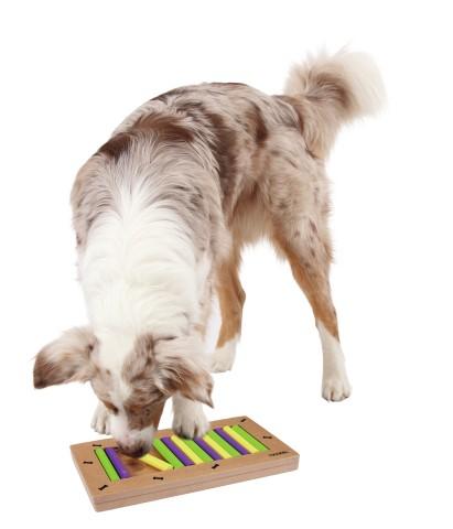 Hunde Denkspiel
