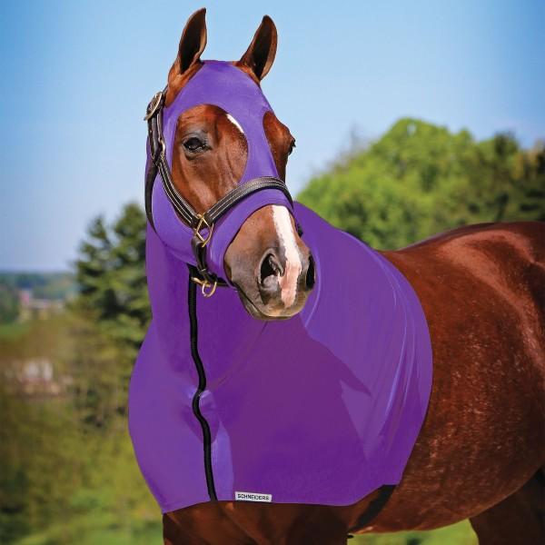 Sleazy Pferd